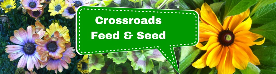 Crossroads Feed & Seed