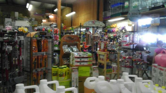 [Image: Find deals on shovels, buckets, gloves and other gardening tools you need. ]